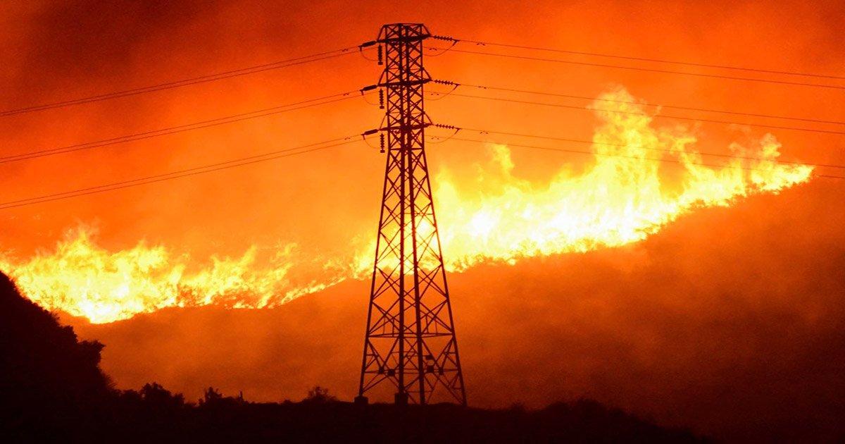 Transmission Line Resilience to Bushfires